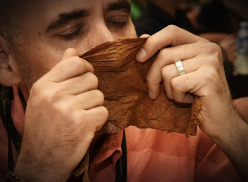 10 reasons why no one wants to miss the Habano Festival in Cuba