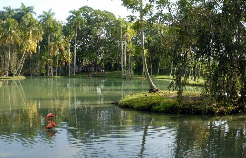 Villa San José del Lago recibe el premio Travelers' Choice 2020